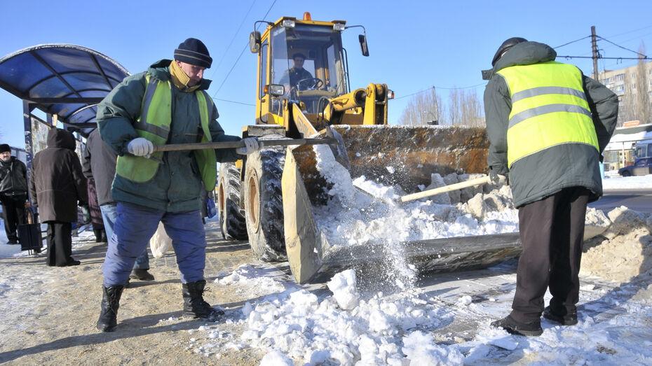 Воронежгидромет: выходные в столице Черноземья будут снежными и теплыми