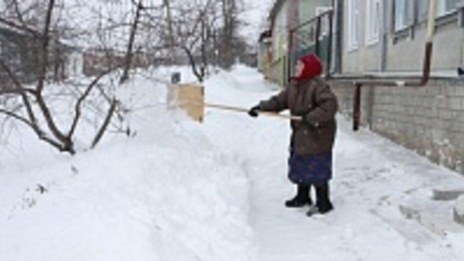 За сутки в Богучарском районе выпало 30 сантиметров снега