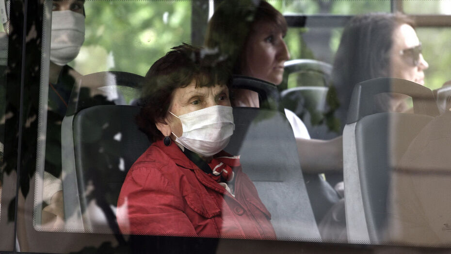 За сутки от коронавируса вылечили 131 воронежца