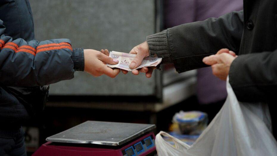 Средняя зарплата в Воронежской области составила 27,9 тыс рублей