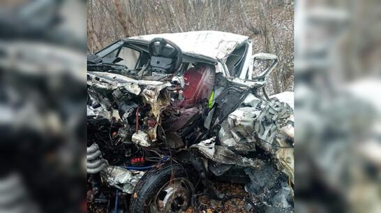 «Газель» влетела в фуру в Воронежской области: погиб водитель