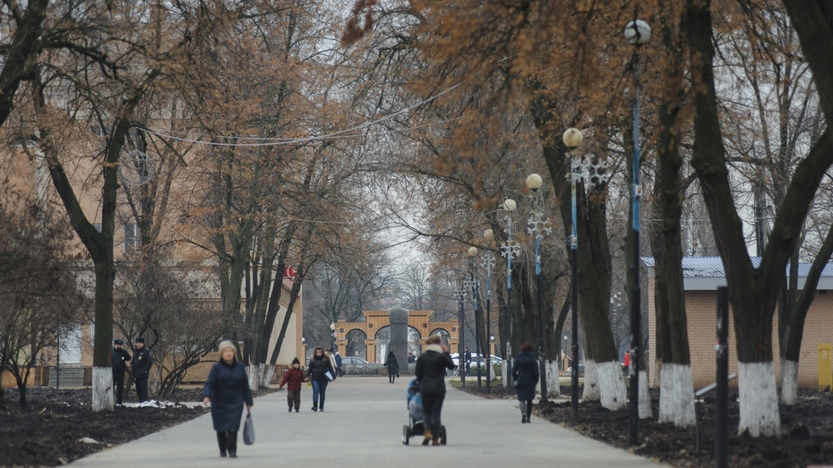 Губернатор похвалил работу борисоглебских властей по благоустройству города