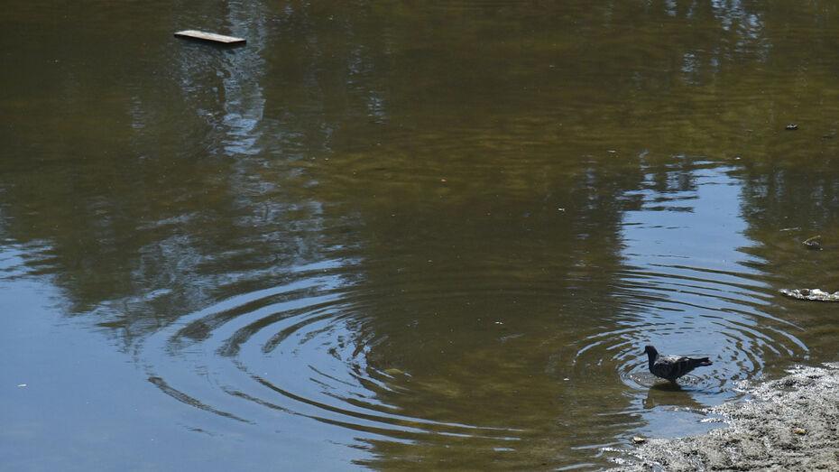 Озеро на Минской обновят в Воронеже к лету 2021 года