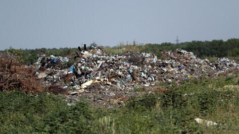 Вдоль трассы в Воронежской области ликвидируют огромную незаконную свалку