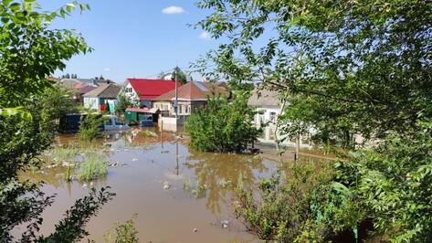 На левом берегу Воронежа вода затопила 5 частных домов и 12 участков