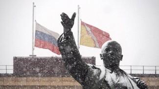 В Воронеже перенесли новогодние утренники из-за траура по погибшим в катастрофе Ту-154