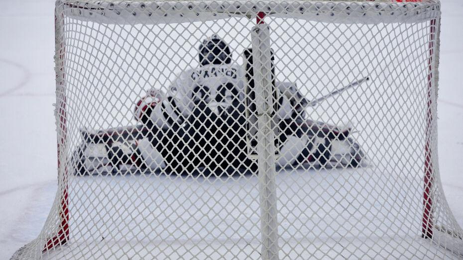 Хоккейная «Россошь» дважды обыграла «Тверичей-СШОР»