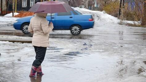 В Грибановском районе установилась апрельская погода