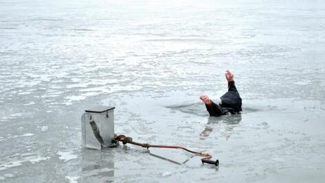 Воронежские спасатели предупредили рыбаков об опасном льде