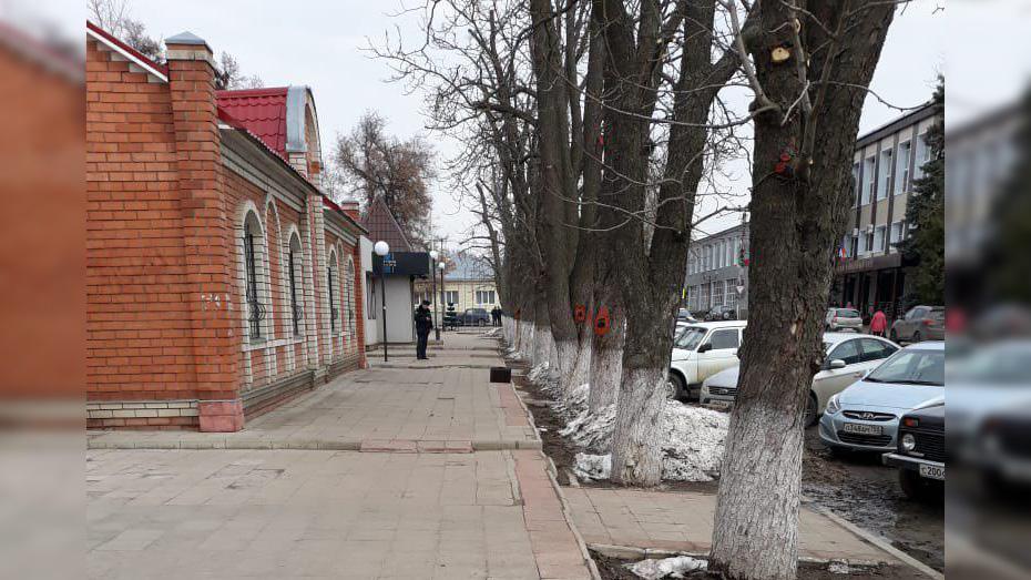 В Боброве на улице напротив здания мирового суда обнаружили портфель