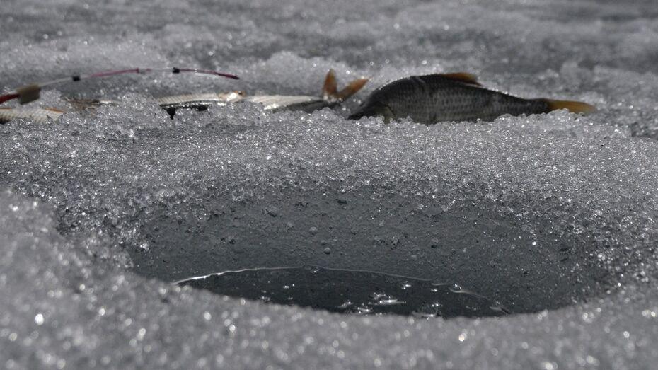 В Воронежской области браконьер получил условный срок за нападение на рыбинспектора