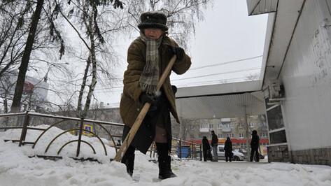 Воронежские чиновники будут предоставлять фотоотчеты об уборке дворов