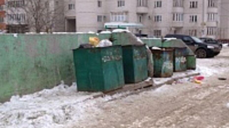Власти Воронежа хотят, чтобы мусорные контейнеры в городе были закрытыми