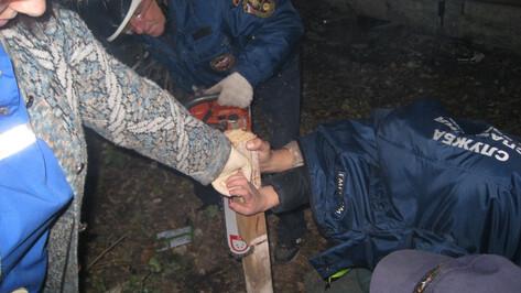 В Воронеже спасатели помогли достать гвоздь из руки дошкольника
