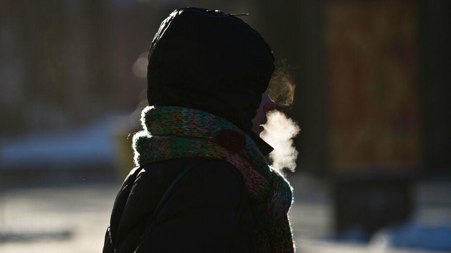 Синоптики пообещали до -23 градусов в Воронежской области