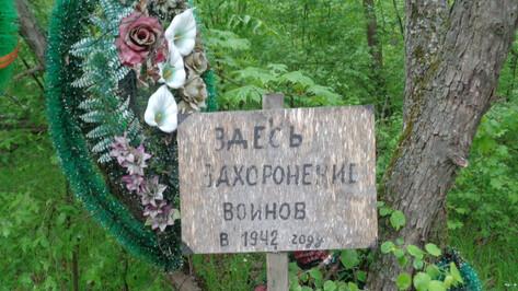 Историк попросил добровольцев убраться на братских могилах в лесу под Воронежем