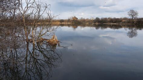 Четырнадцать человек погибли на воронежских водоемах с начала 2021 года