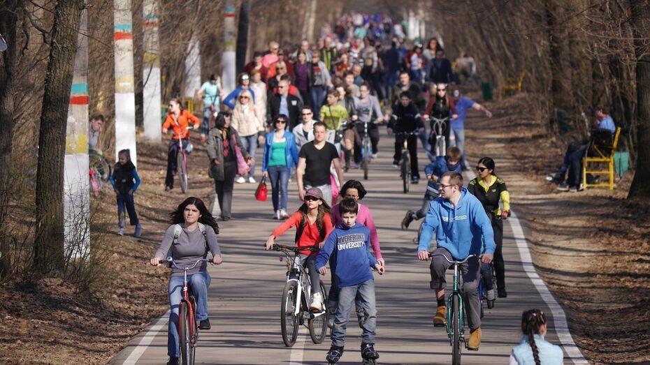 Воронежцы начали сбор подписей против превращения «Олимпика» в парк