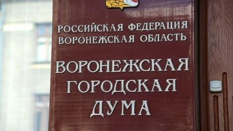 Депутаты гордумы порекомендовали коллегам отменить выборы мэра Воронежа