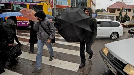Непогода останется в Воронеже на всю рабочую неделю