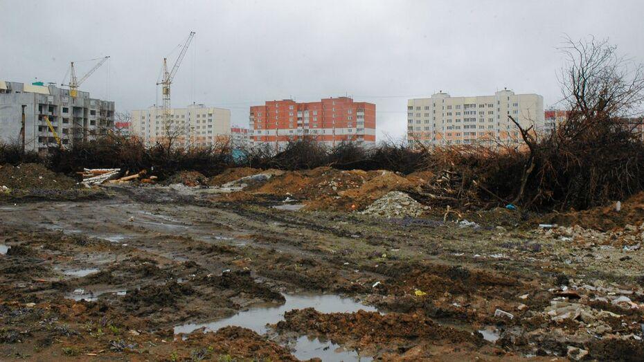 Управление экологии Воронежа нашло нарушения при вырубке в яблоневом саду