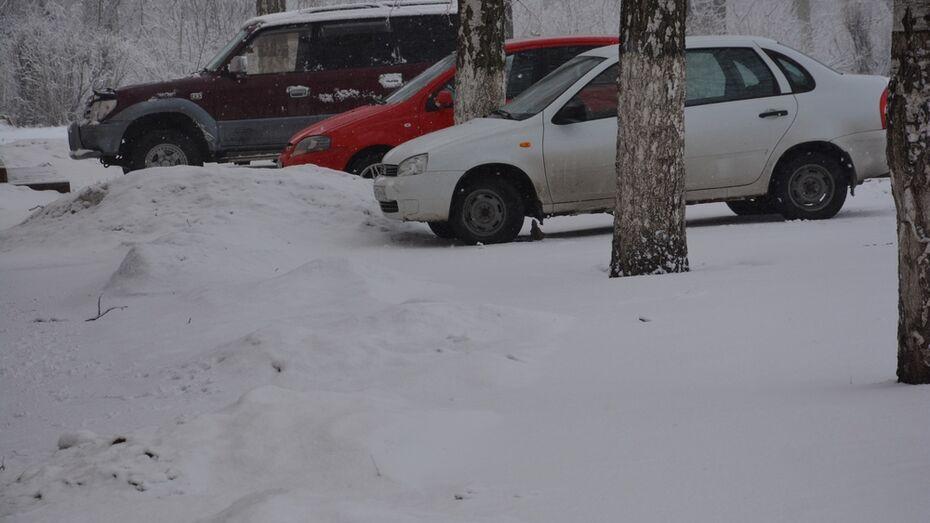 В Поворино 3 апреля вернулась зима