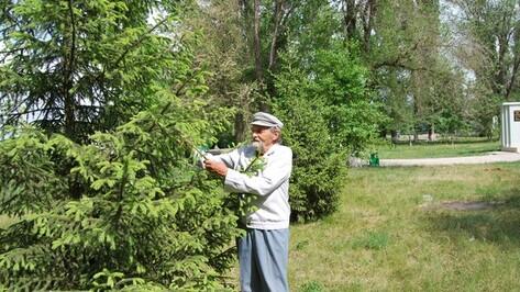 Россошанский пенсионер за свой счет озеленяет село