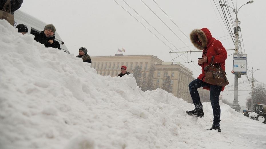 Снегопад сковал Воронеж (ФОТО)
