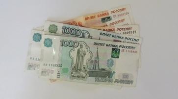 Средний доход жителя Воронежской области достиг 27 тыс рублей