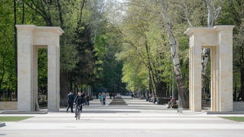 В Центральном парке Воронежа пройдут бесплатные мастер-классы по йоге