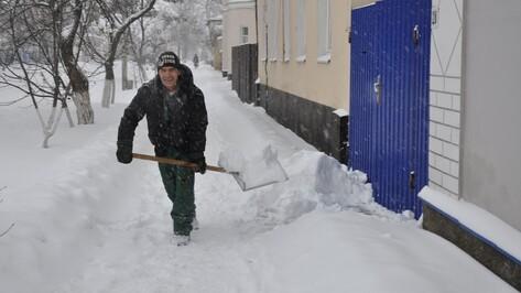 В ночь на воскресенье 28 декабря на Павловск обрушился снегопад