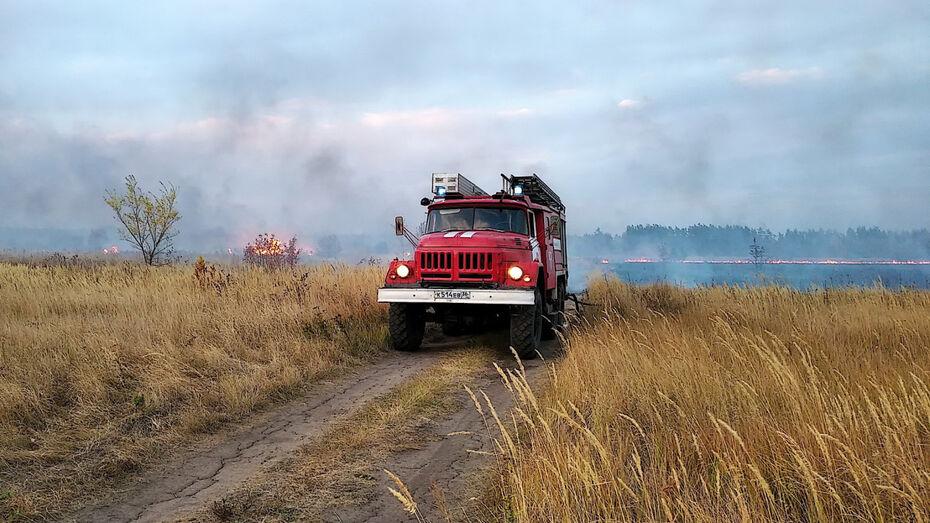 В список самых пожароопасных не вошли только 5 районов Воронежской области