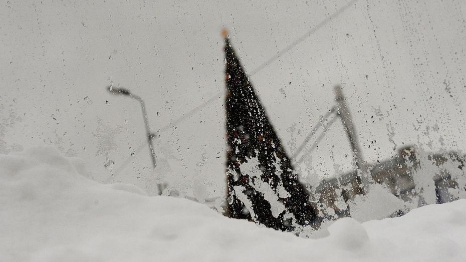 МЧС предупредило о снежных заносах и сильном ветре в Воронежской области