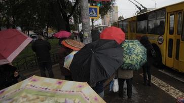 Дожди в Воронеже закончатся в середине недели