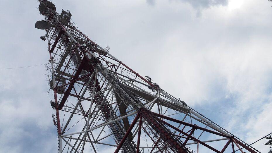На воронежской телебашне зажгутся звезды в честь юбилея полета Гагарина