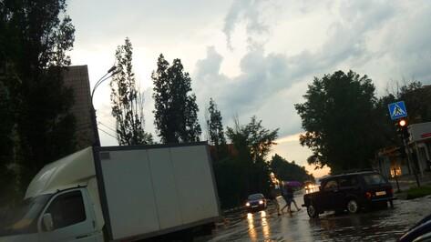 Аномальную жару в Воронежской области скоро дополнят сильные дожди с грозами