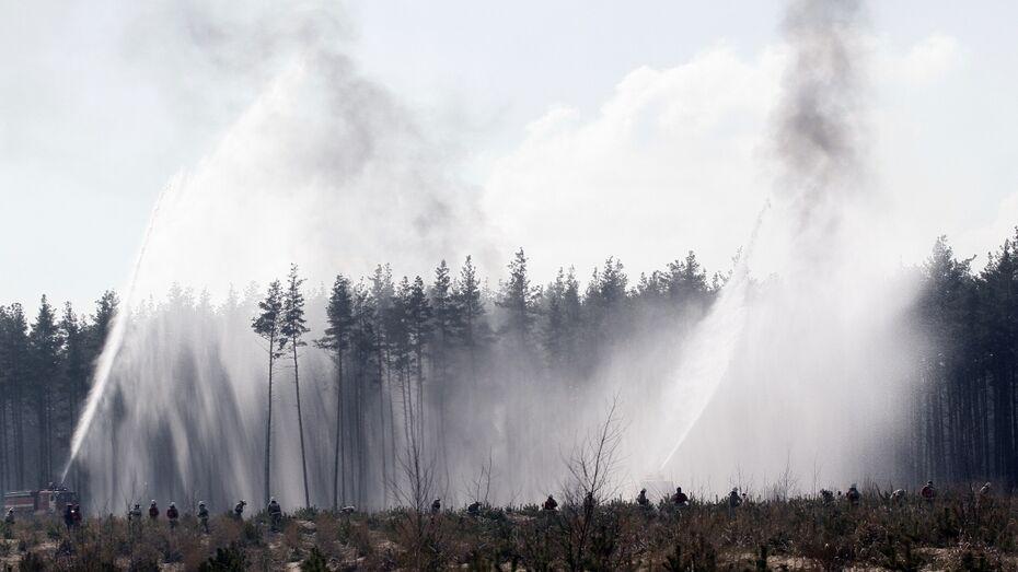 Глава Воронежской области предложил усилить профилактику ландшафтных пожаров