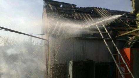 Причиной пожара с двумя погибшими детьми в воронежском селе могла стать шалость