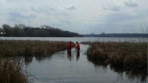 Волонтеры нашли тело пропавшего полгода назад воронежца