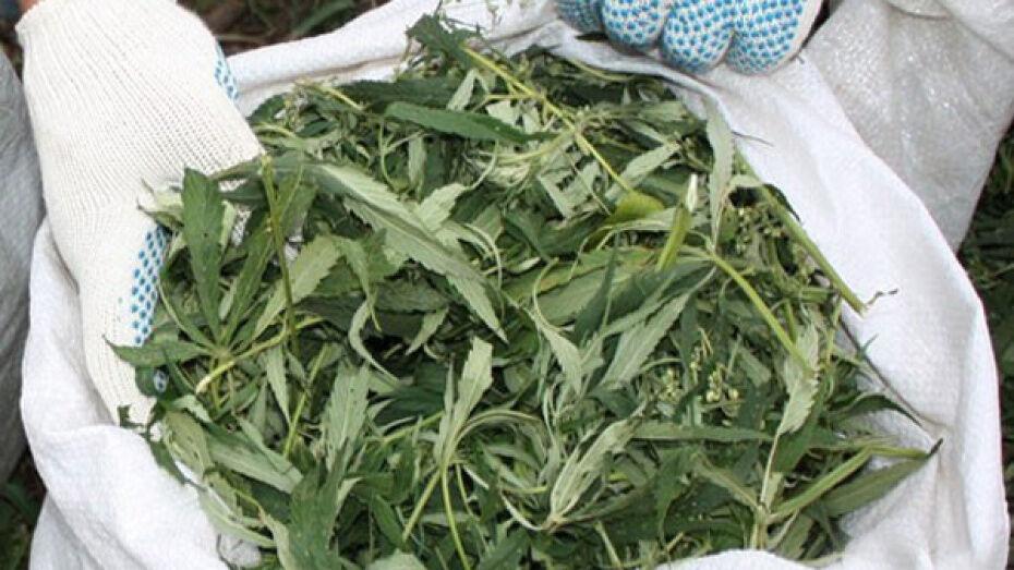 В Верхней Хаве полицейские нашли у 27-летнего жителя мешок с 5 кг конопли
