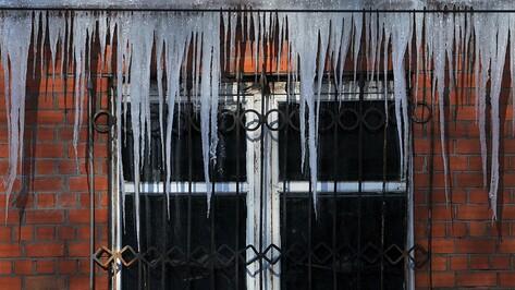 Воронежские власти предупредили горожан об опасности наледи и сосулек