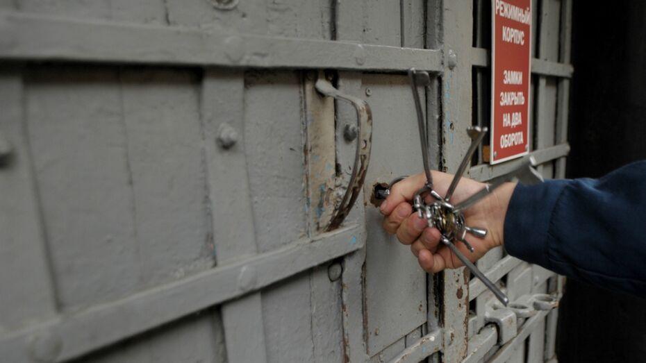 Под Воронежем селянин получил 2 года колонии за нападение на женщину-полицейского
