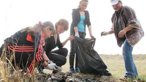 В Аннинском районе журналисты и школьники очистили берег Битюга