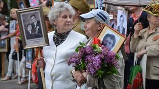 По маршруту следования «Бессмертного полка» в Воронеже уберут рекламные щиты