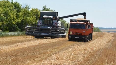 В Калачеевском районе началась уборка зерновых