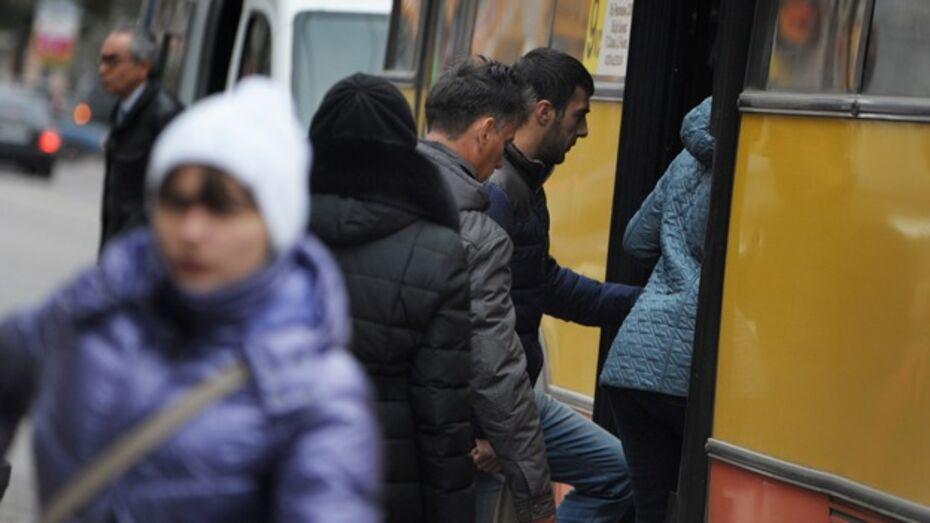 В 2013 году жители Воронежской области стали чаще ездить на маршрутках