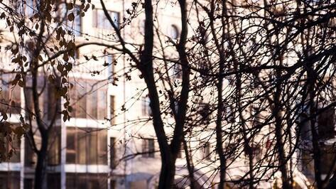 Гид РИА «Воронеж»: что делать в городе на выходных 21 и 22 ноября