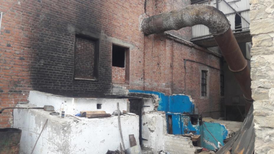 В Воронежской области прекратили дело гендиректора хлебоприемного предприятия
