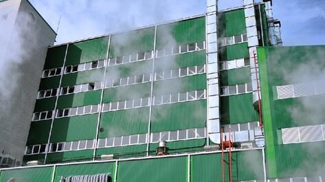 Евдаковский масложиркомбинат в Воронежской области сменит собственника