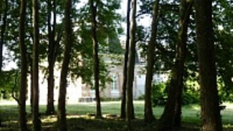 Воронежский художник оценил «монастырь искусства» Михаила Шемякина во Франции